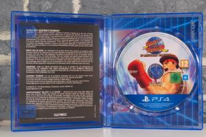 Street Fighter 30th Anniversary Collection - Edition Collector (12)